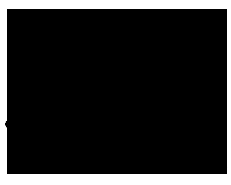 TIGER LOGO black